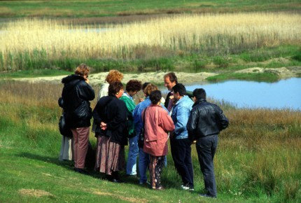 Guided nature tours
