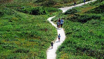 Kies één van de 20 wandelingen