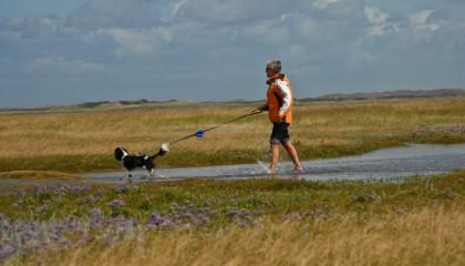 Wandern auf Texel mit dem Hund